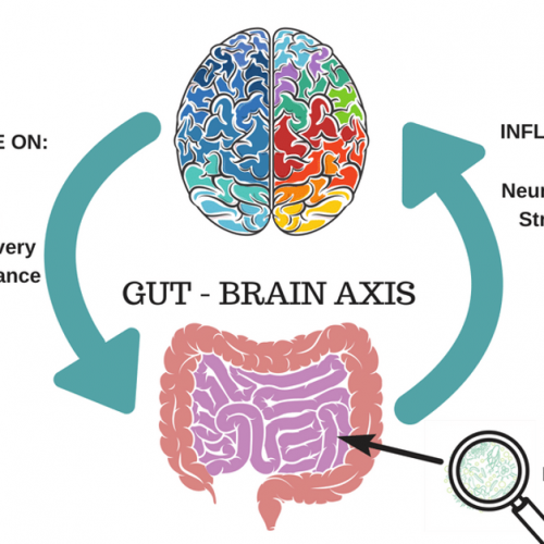 gut-health - pic 1